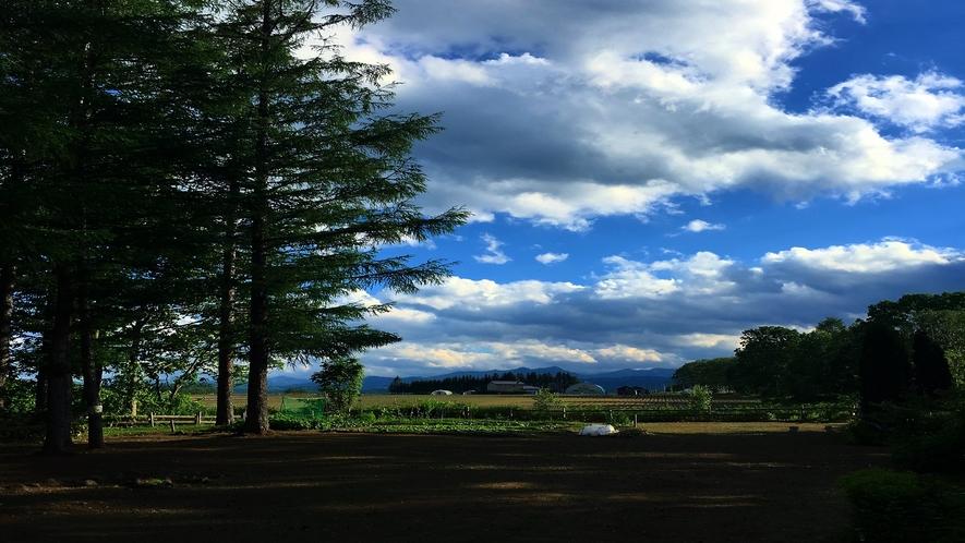 帯広八千代の庭からの眺め  初夏