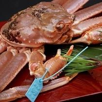 タグ付生ずわい蟹