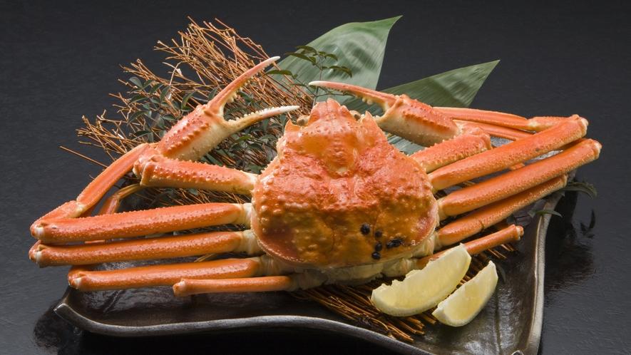 ずわい蟹 イメージ