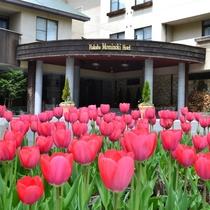春のホテル前
