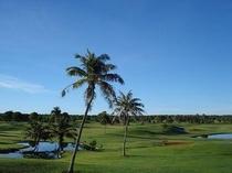 ゴルフコース2