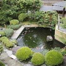 鯉の泳ぐ池
