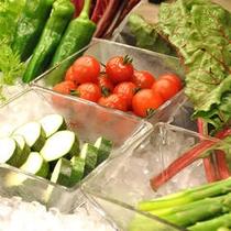プリフィックスディナー 野菜イメージ
