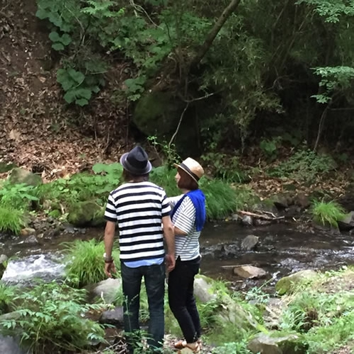 涼しげな渓流