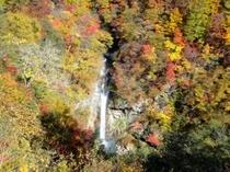 駒止の滝の紅葉