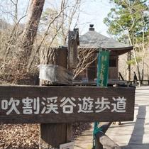 【吹割の滝】吹割渓谷遊歩道の浮島橋を渡ると浮島観音堂があります