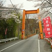 【春の吊り橋(内楽橋)】片品渓谷に架かる吊り橋