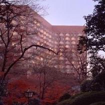 美しい紅色とホテル外観