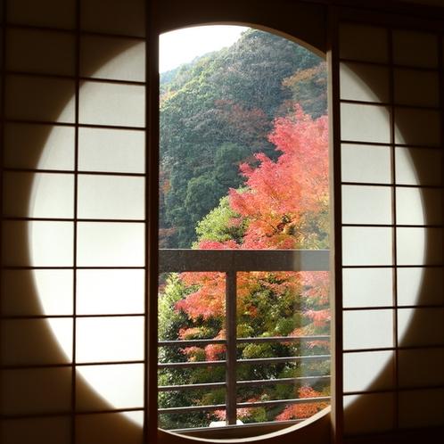 【聚楽第和室12+4畳】秋の景色