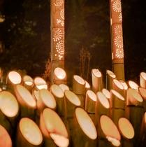 【竹灯籠】ほのかな灯りで照らされる散策路