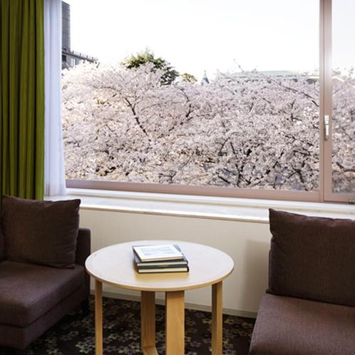 ■デラックスツインからの桜の景色(※桜の開花の時期・客室により見え方が異なります。)
