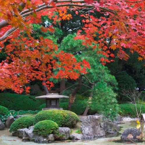 紅葉が美しい秋の日本庭園