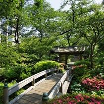 都心とは思えない美しい自然につつまれた高輪の日本庭園散策をごゆっくりお楽しみください。