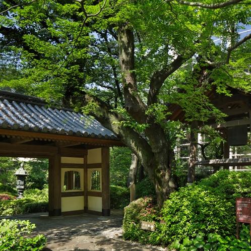 ■日本庭園
