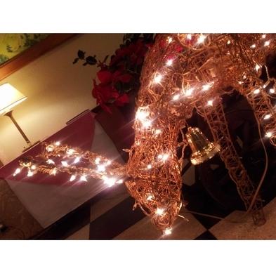 クラシックホテルで過ごすクリスマス!ノエルディナー&ワンドリンク付き