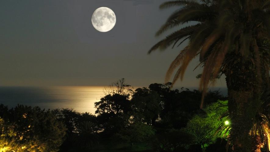 相模灘に浮かぶお月さま&ムーロード