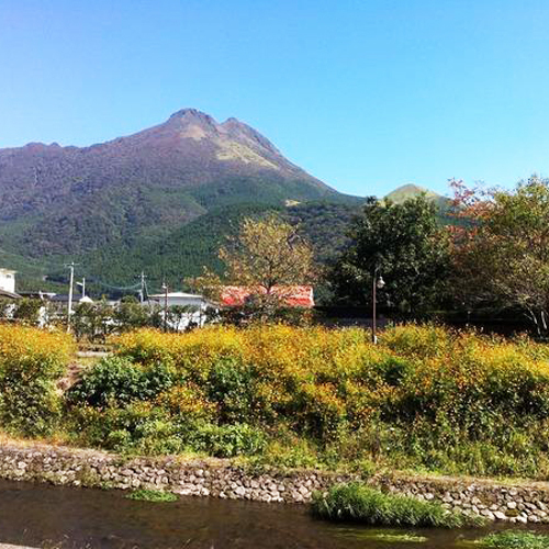 天候に良い日には由布岳がきれいに見えます♪散策にお出かけください〜。