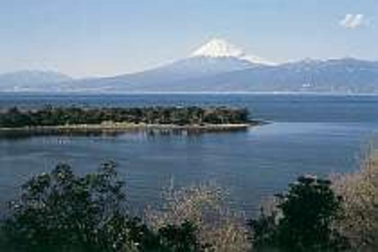 大瀬岬の後方にそびえたつ富士山