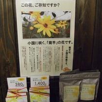 小国の特産品「菊芋」もオススメです