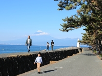 駿河湾と家族と富士