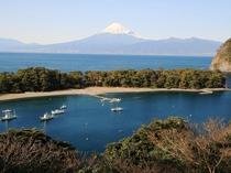 展望台からの岬と富士
