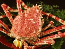 【夕食】世界最大の蟹「高足蟹」≪別注可≫