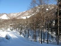 ホテル敷地内の雪景色イメージ