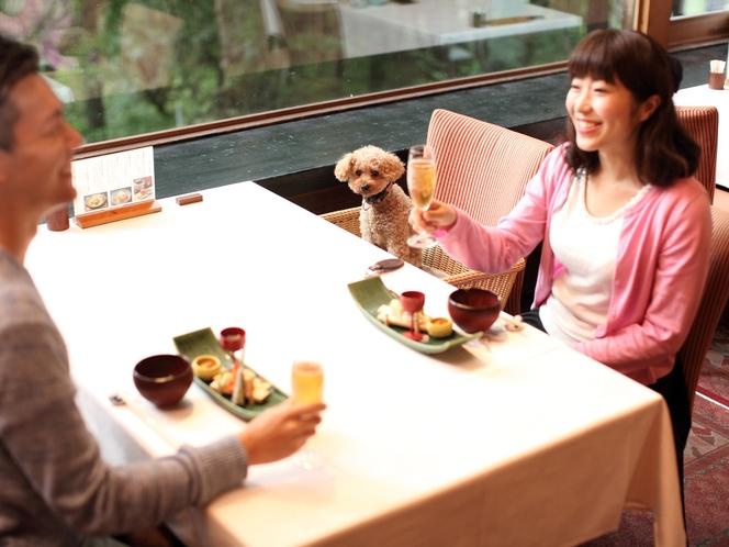 レストランでわんちゃんと食事
