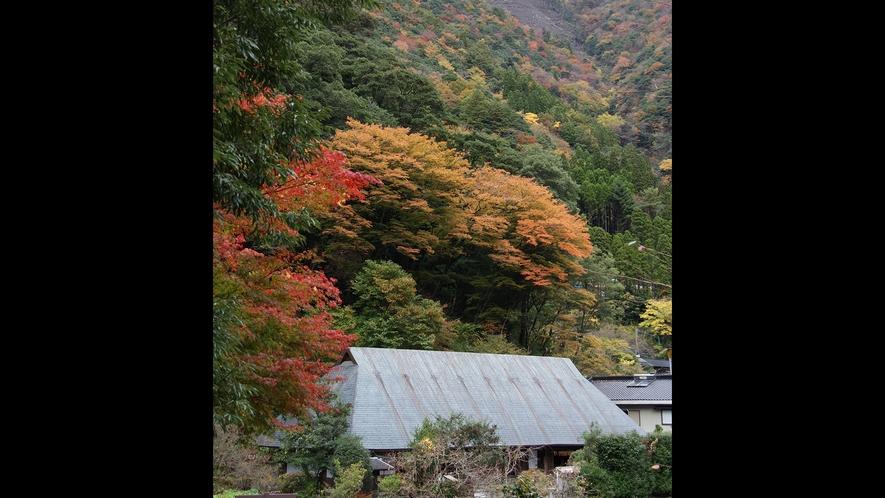 *【外観】鶴富屋敷・国指定重要文化財