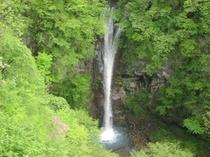 新緑と駒止めの滝