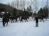 雪上乗馬inクラークホースガーデン