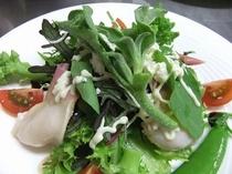 ホッキ貝のサラダ