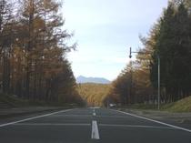 中富良野の紅葉2011-2