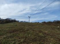 北の峰スキー場を下から見上げる