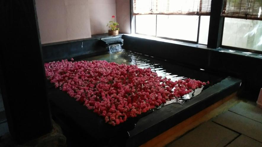 *母の日当日はカーネーション風呂!温泉でゆったりと。