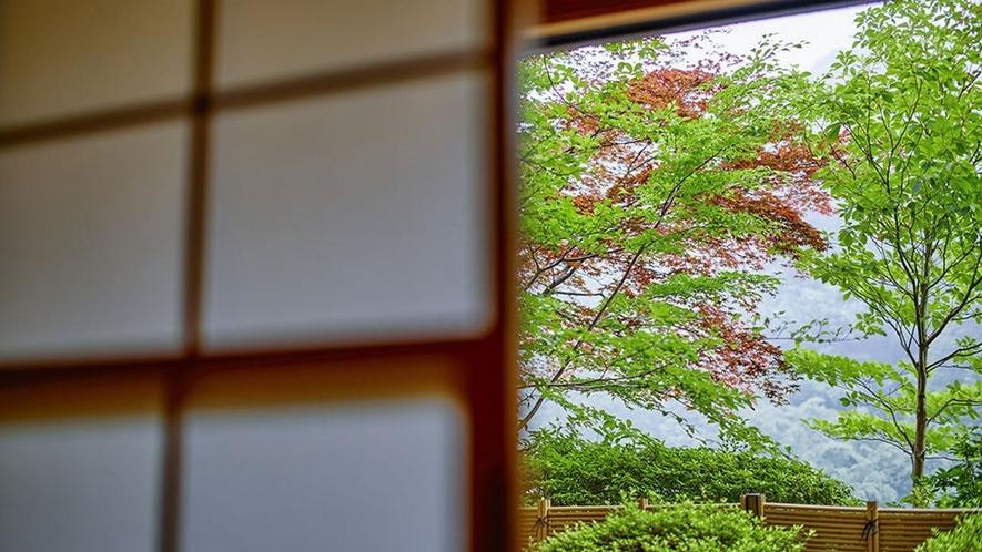 庭園付き客室からは、自然の美しさ、季節の移ろいをご覧いただけます。