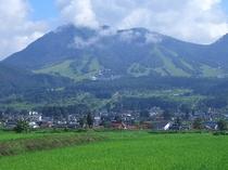 初夏の高社山