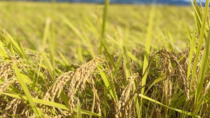 ■農家さん応援■コロナ禍で余っちゃいました・・・熱塩加納産無農薬米5kgプレゼント!先着30組限定!