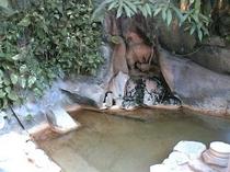 湯の華 岩風呂
