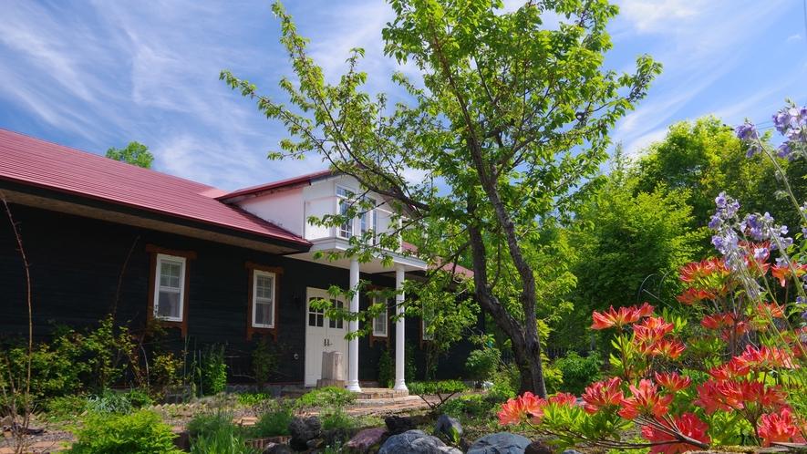 花は咲き、青空の新緑の鮮やかな頃の庭から。