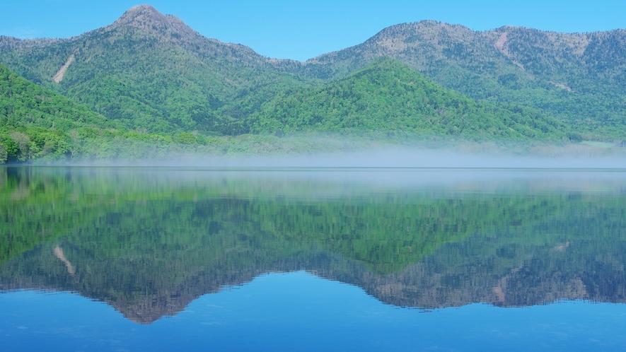 青空と深緑の鮮やかな頃の屈斜路湖