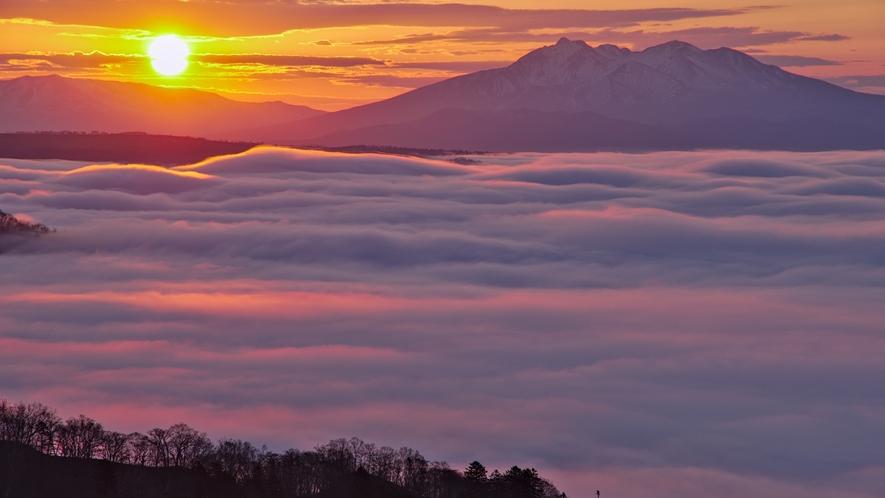 雲海を照らす朝陽。美幌峠から