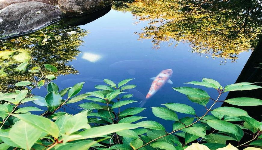 【フロント受付前】小池