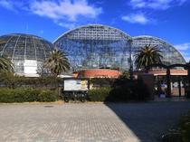 夢の島熱帯植物館_ホテルから徒歩3分