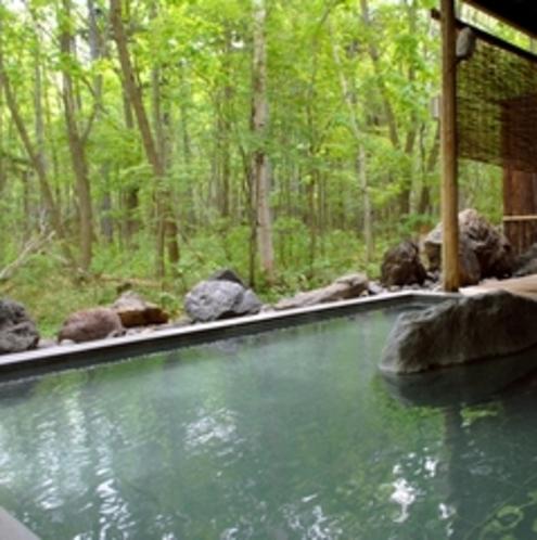 春の露天風呂