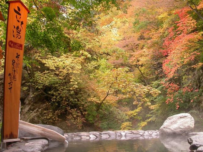 広瀬川源流露天風呂‗秋‗立ち湯