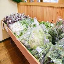 *【お土産処】旬のお野菜を揃えております。
