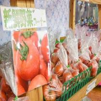 *【お土産処】館内では地元の野菜もお買い求めいただけます。