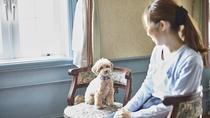 【部屋】ペットとお泊りルーム