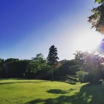 【ゴルフ】陽射しが注ぐゴルフ場